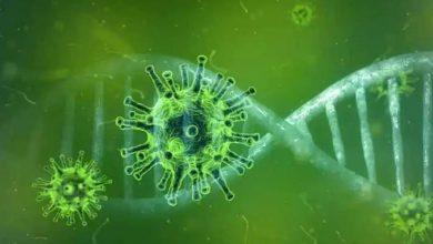 Photo of coronavirus delta สายพันธุ์ใหม่ super สายพันธุ์ covid 22 อาจอันตรายยิ่งกว่านี้    Coronavirus อาจถึงตายได้มากกว่าที่เคย?  ตอนนี้ความน่ากลัวของ COVID-22 กำลังตามหลอกหลอนนักวิทยาศาสตร์