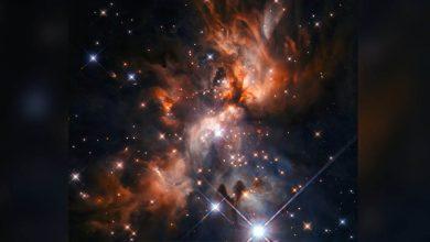 Photo of NASA Hubble Space Telescope จับภาพใหม่ของดาวทารกที่สดใส |  กล้องส่องทางไกลของ NASA โชว์สถานที่เกิดดาว ภาพนี้คงเซอร์ไพรส์